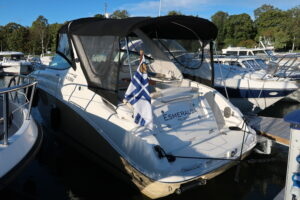Sea Ray Sundancer 280 -12